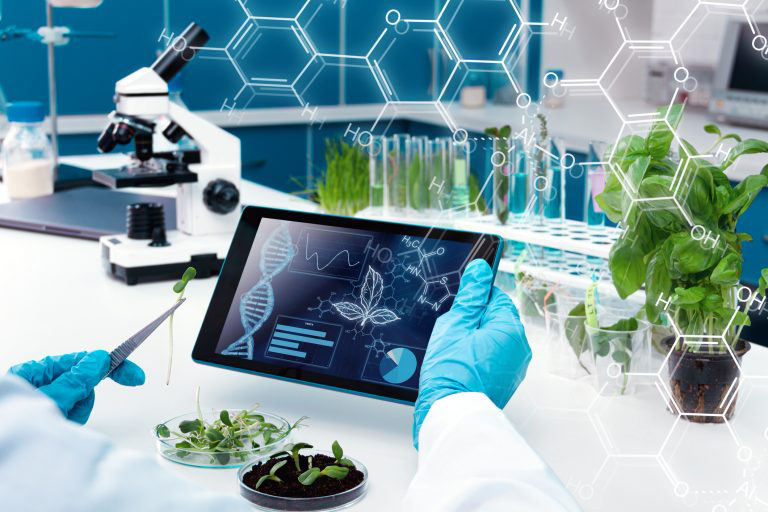biology desk with microscope, plants and screen